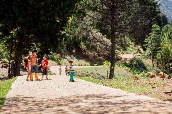 Camino de la Vida - Eje de movilidad peatonal