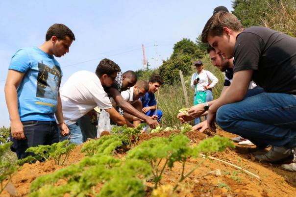 Actividad AIESEC - Huertas